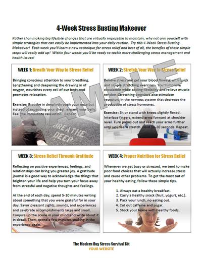 the modern day stress survival guide kit. Black Bedroom Furniture Sets. Home Design Ideas